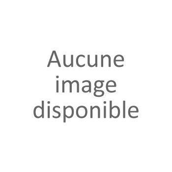 Plus Value Peinture Anthracite RAL 7016